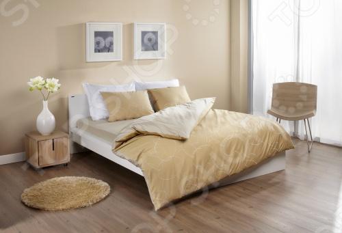 Фото Комплект постельного белья Dormeo Elipse. 2-спальный. Цвет: серый