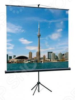 Экран проекционный Lumien 684266