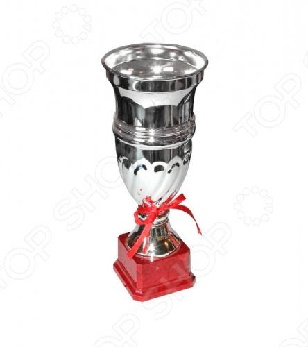 Кубок Start Up T6 изготовлен из металла с пластиком. Основание сделано из мрамора. В средневековье, после рыцарских турниров, победителю подносили кубок вина. Обычай сохранился. И примерно с середины XIX века кубок стал применяться в качестве приза или подарка.