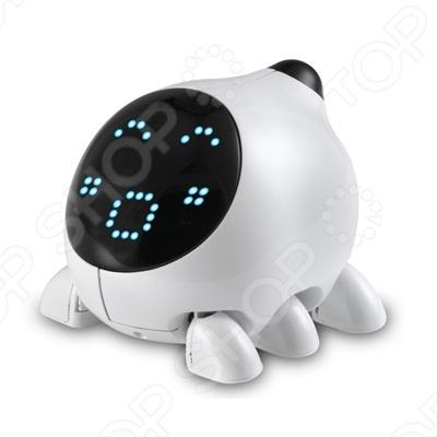 Робот U.bo