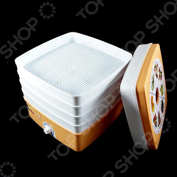 Сушилка для овощей Ротор Дива-Люкс СШ-010-02