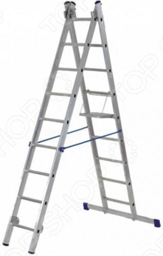 Лестница двухсекционная РОС
