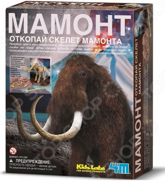 Набор юного археолога 4M «Скелет Мамонта» чашка для яйца colour caro