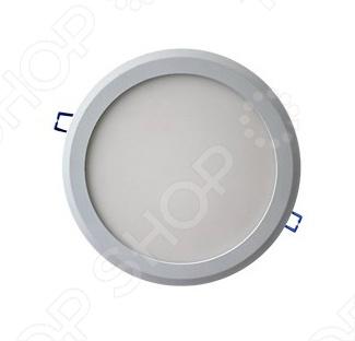 Светильник потолочный ВИКТЕЛ BK-CE11T