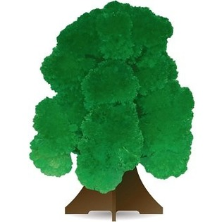 Купить Набор для выращивания дерева Good Hand CD-017