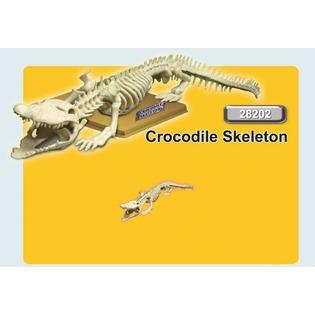 Купить Наглядное пособие Eastcolight «Скелет крокодила»