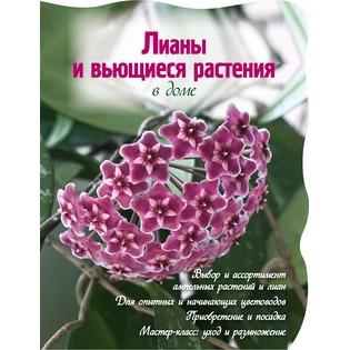 Купить Лианы и вьющиеся растения в доме