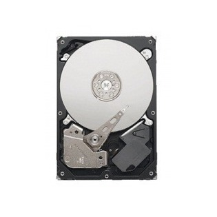 Купить Жесткий диск Seagate ST1000VM002