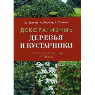 Купить Декоративные деревья и кустарники. Иллюстрированный справочник