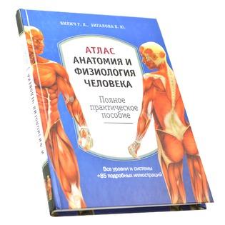 Купить Атлас. Анатомия и физиология человека