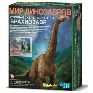 Купить Набор юного археолога 4M «Скелет Брахиозавра»