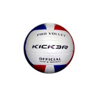 Купить Мяч волейбольный Larsen Kicker Vega