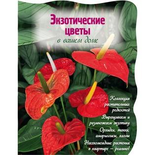 Купить Экзотические цветы в вашем доме