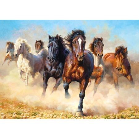 Купить Пазл 1000 элементов Castorland «Гром и пыль»