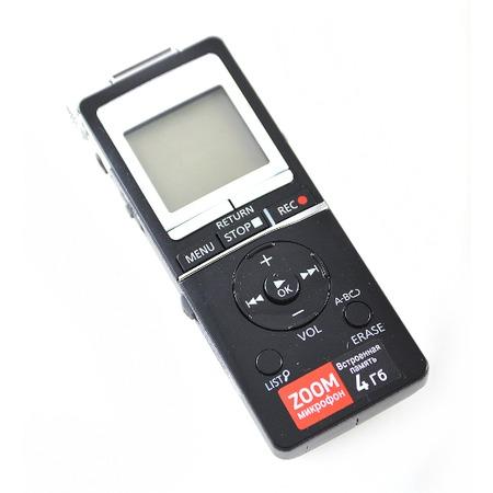 Купить Диктофон Panasonic RR-XS450EE-K