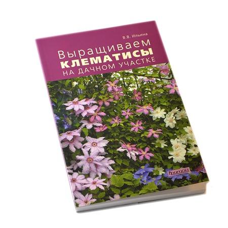 Купить Выращиваем клематисы на дачном участке