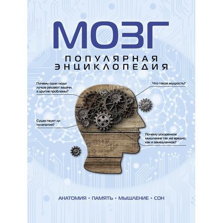 Купить Мозг. Популярная энциклопедия