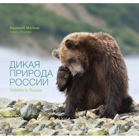 Купить Дикая природа России