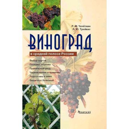 Купить Виноград в средней полосе России.