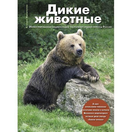 Купить Дикие животные. Иллюстрированная энциклопедия обитателей средней полосы России
