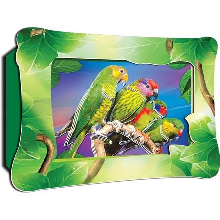 Купить Картинка объемная Vizzle Ожереловые попугаи