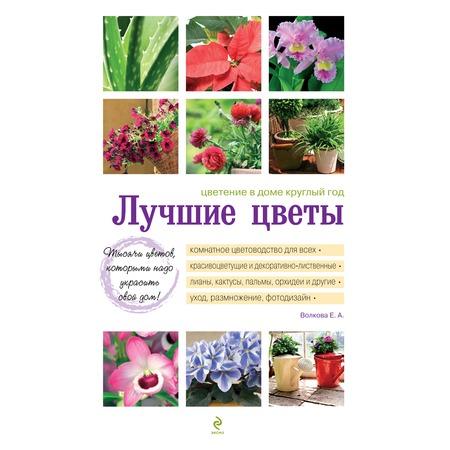Купить Лучшие цветы. Цветение в доме круглый год