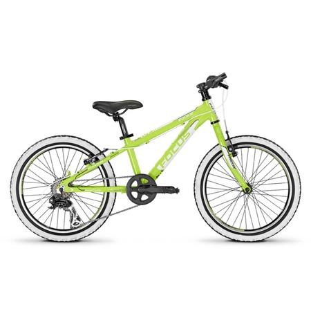 Купить Велосипед Focus Raven Rookie 24R
