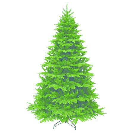 Купить Ель декоративная Triumph Tree «Гималайская»