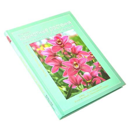 Купить Лучшие комнатные растения