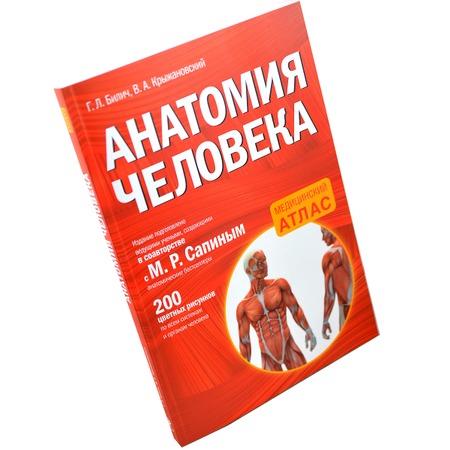 Купить Анатомия человека
