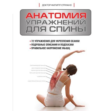 Купить Анатомия упражнений для спины