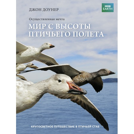 Купить Мир с высоты птичьего полета