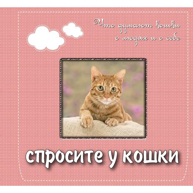 фото Спросите у кошки. Что думают кошки о людях и о себе