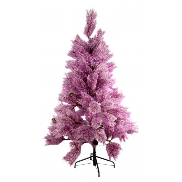 фото Сосна декоративная Снегурочка «Сиреневая»