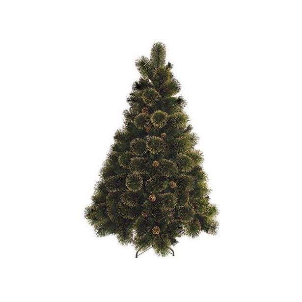 фото Сосна декоративная Снегурочка «С золотом». Количество шишек: 55. Высота: 270 см