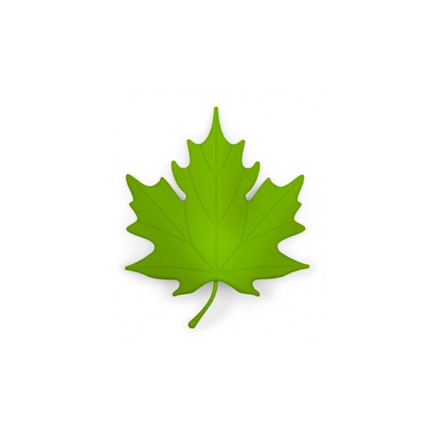 фото Подпорка для двери Qualy Autumn. Цвет: зеленый