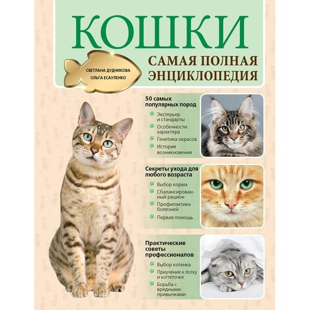 фото Кошки. Самая полная энциклопедия