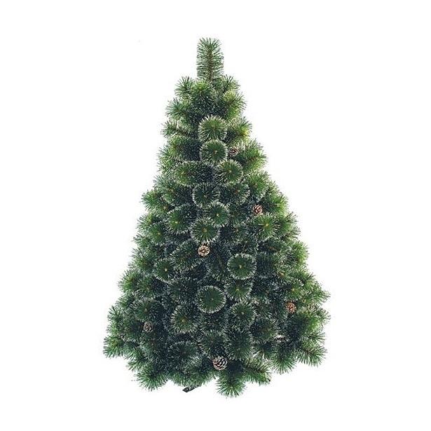 фото Сосна декоративная Снегурочка «Серебристая». Количество шишек: 23. Высота: 180 см