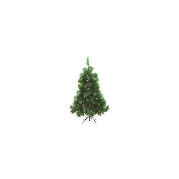 фото Сосна декоративная Снегурочка «С натуральными шишками»
