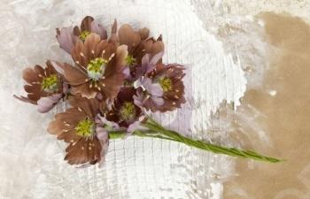 Цветы прима маркетинг купить букеты на свадьбу и их стоимость