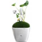 Купить Светодиодная лампа «Аватар»