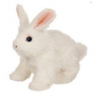 Купить Интерактивный ходячий кролик Hop\'n\'Cuddle Bunnies