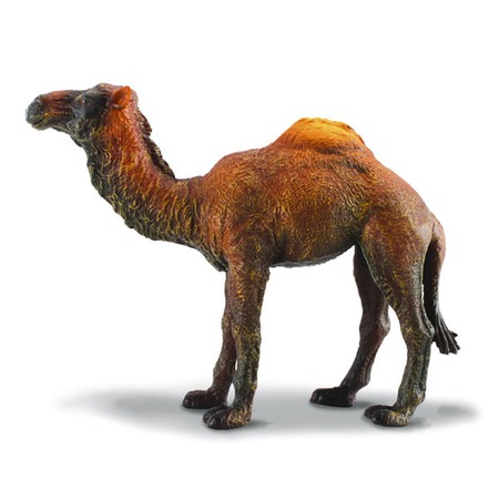 Купить Фигурка Gulliver Одногорбый верблюд