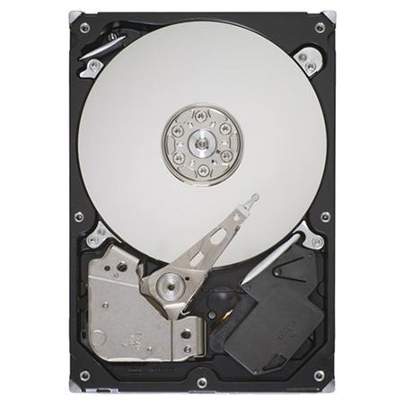 Купить Жесткий диск Seagate ST250DM000