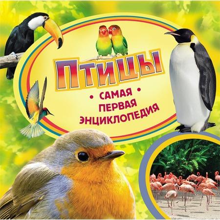 Купить Птицы
