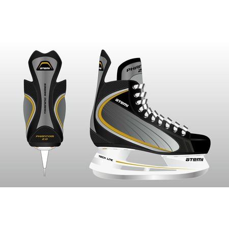 Купить Коньки хоккейные ATEMI PHANTOM 2.0 GOLD