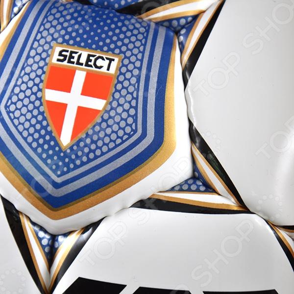 Мяч футбольный Select Number 10 IMS 2